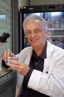 Professor Israel Vlodavsky